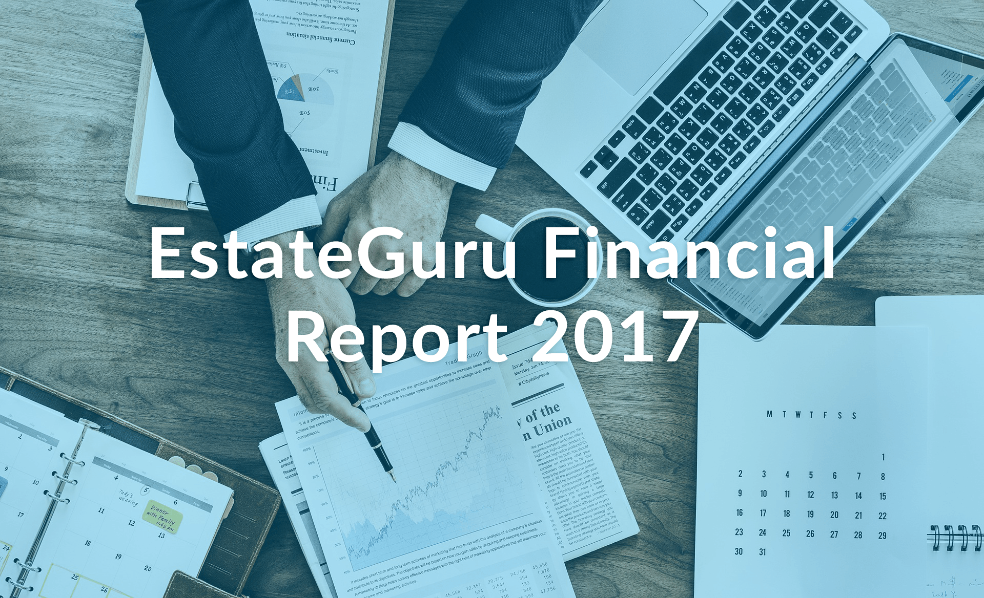 EstateGuru Financial Report 2017