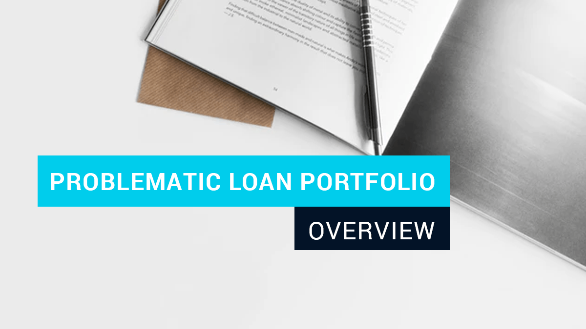 Problematic Loan Portfolio overview