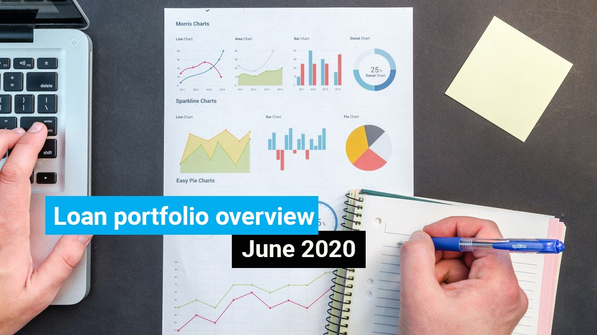 Loan portfolio overview – June 2020