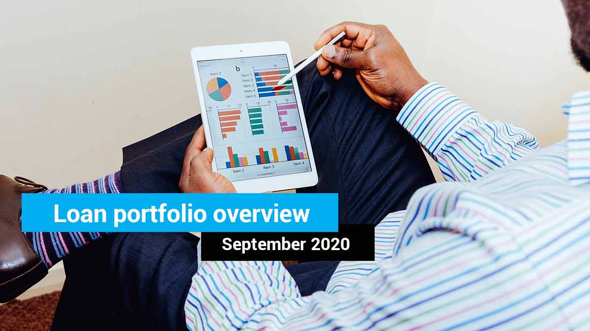 Loan portfolio overview – September 2020